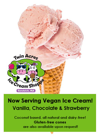 vegan ice cream - dairy free - sandwich cape cod